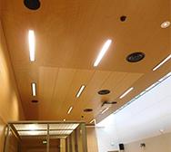 Palais de Justice  de Bourg Faux plafond acoustique  dans salle d'audience